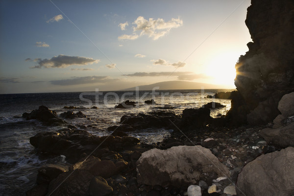Rocky coast in Maui. Stock photo © iofoto