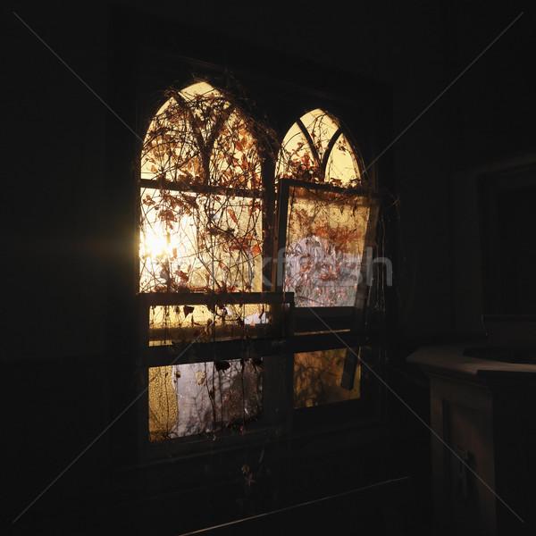 Sunlight through windows. Stock photo © iofoto