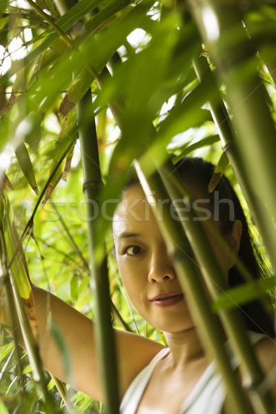 Foto d'archivio: Ritratto · asian · americano · donna · bambù
