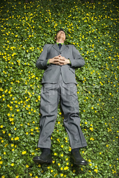 Young Businessman Lying in Flower Patch Stock photo © iofoto