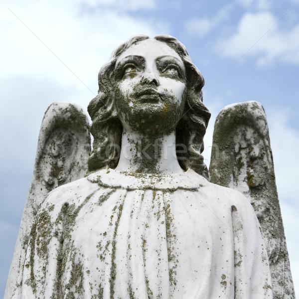 Guardião anjo estátua cemitério Foto stock © iofoto