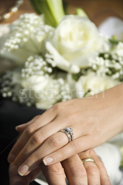 Wedding rings. Stock photo © iofoto