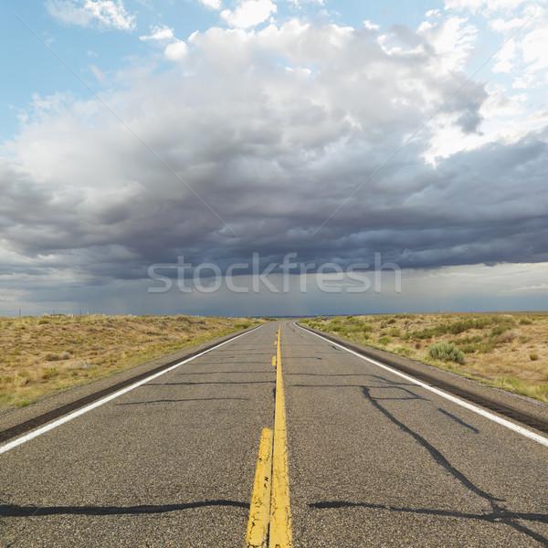 Two lane highway. Stock photo © iofoto