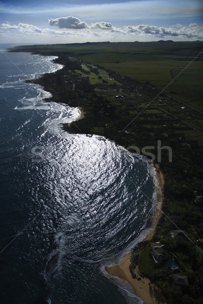 Shoreline in Maui. Stock photo © iofoto