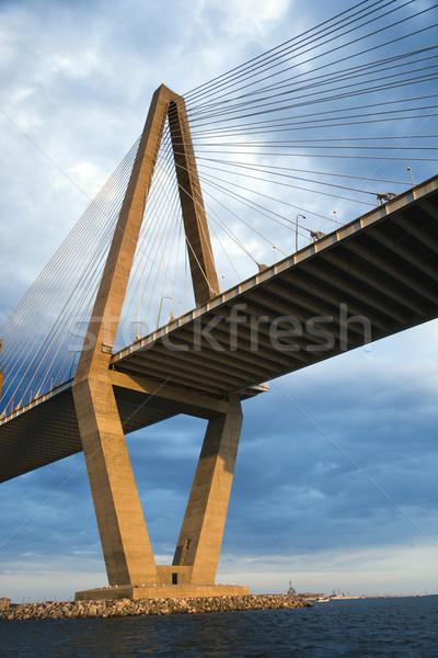 Cooper River Bridge in Charleston. Stock photo © iofoto