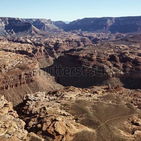 グランドキャニオン 公園 アリゾナ州 米国 ストックフォト © iofoto
