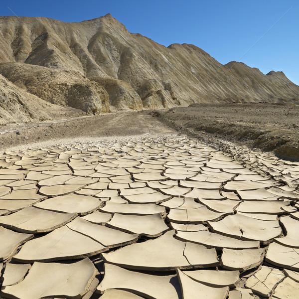 śmierci dolinie krajobraz parku wyschnięcia pęknięty Zdjęcia stock © iofoto