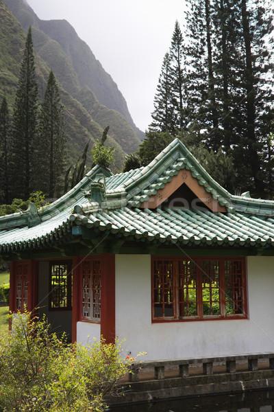 Pagoda montanas tiro valle parque árbol Foto stock © iofoto