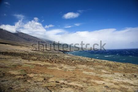 Tájkép Hawaii terméketlen vezető óceán utazás Stock fotó © iofoto