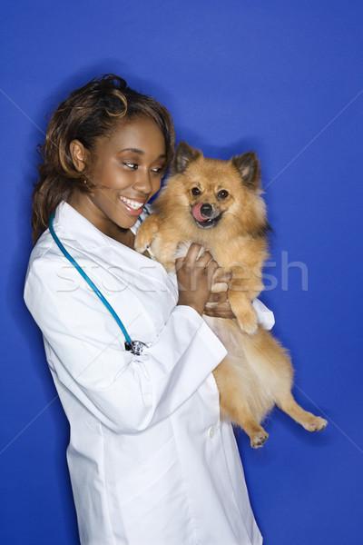 Mulher veterinário cão africano americano Foto stock © iofoto