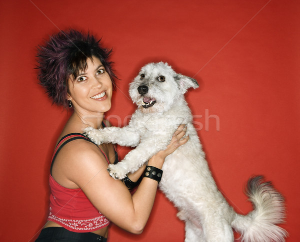 Young woman and white dog. Stock photo © iofoto