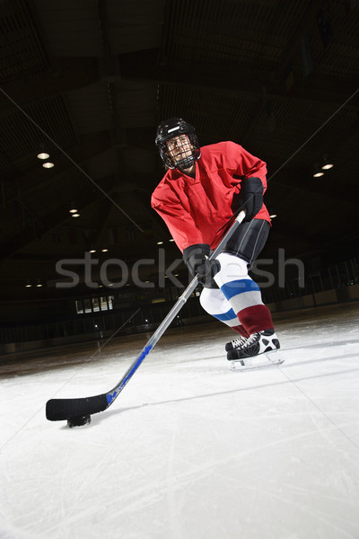 Woman hockey player. Stock photo © iofoto