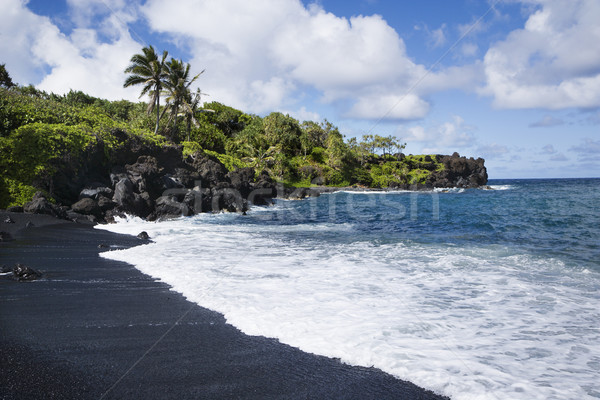 Black sand beach in Maui. Stock photo © iofoto