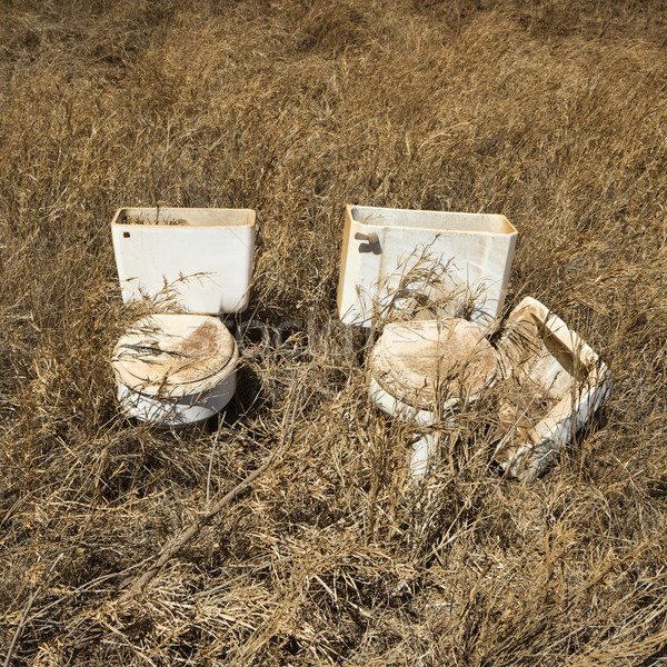 Old toilets in field. Stock photo © iofoto