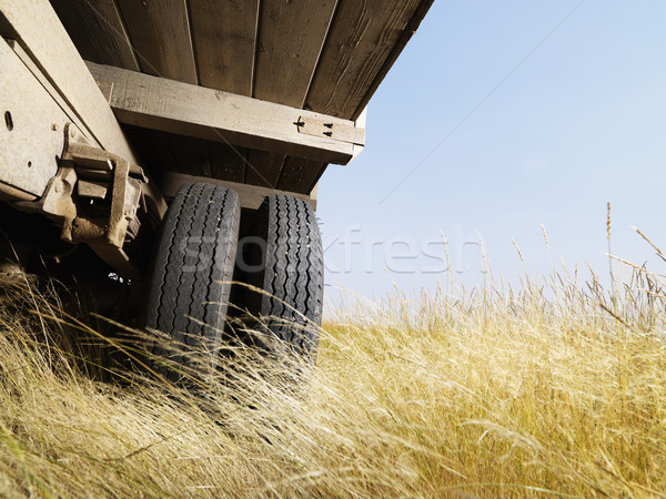 Low angle view of truck. Stock photo © iofoto