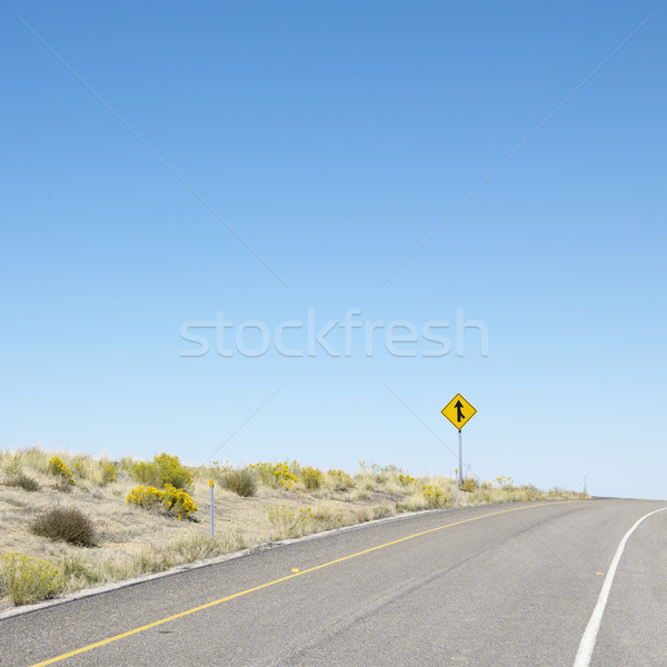 Road into horizon. Stock photo © iofoto