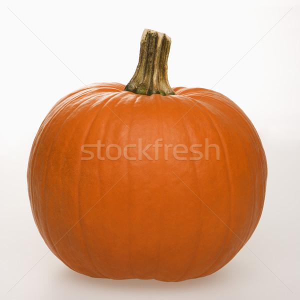 Foto stock: Abóbora · branco · natureza · morta · laranja · comida · natureza