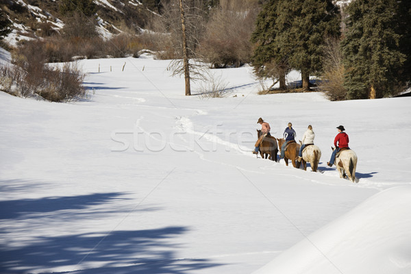 Group horseback riding in winter. Stock photo © iofoto