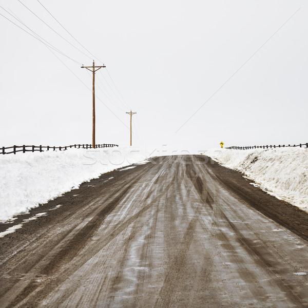 Rural dirt road. Stock photo © iofoto