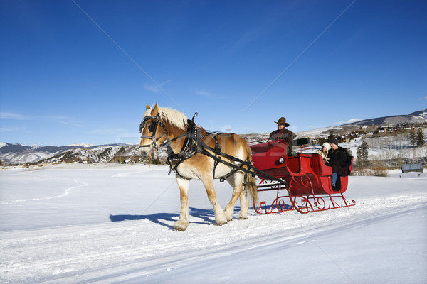 Sleigh ride. Stock photo © iofoto