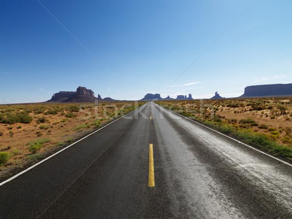 Stock fotó: Festői · sivatag · út · nyitva · tájkép · távoli