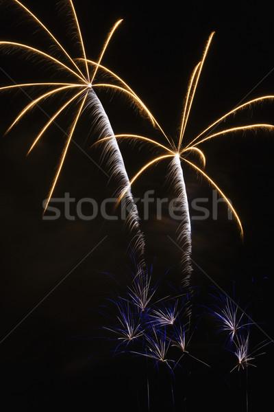 Fireworks display. Stock photo © iofoto