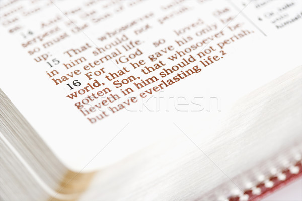 Religious Bible. Stock photo © iofoto