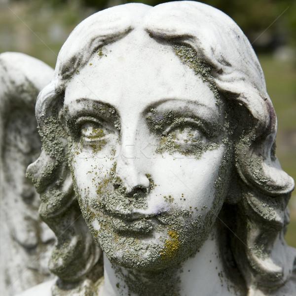Heykel vasi melek yüz mezarlık Stok fotoğraf © iofoto