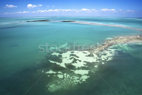Everglades. Stock photo © iofoto