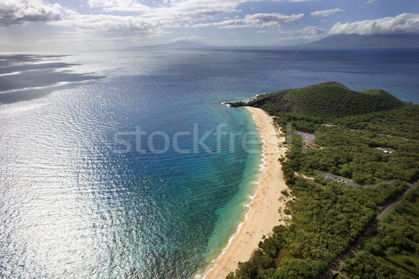 Aerial of Maui beach. Stock photo © iofoto
