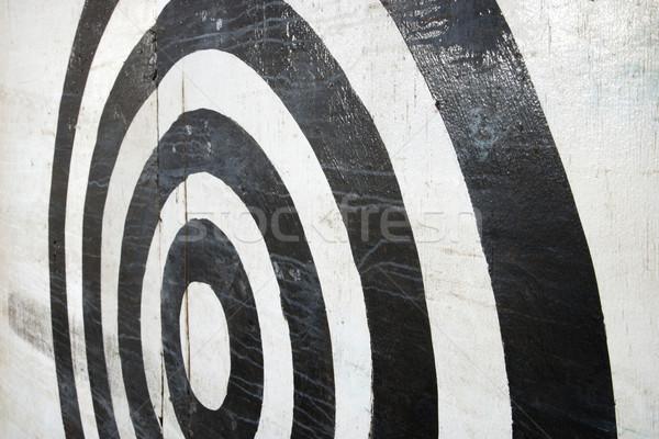 целевой черно белые аннотация цвета игры Сток-фото © iofoto