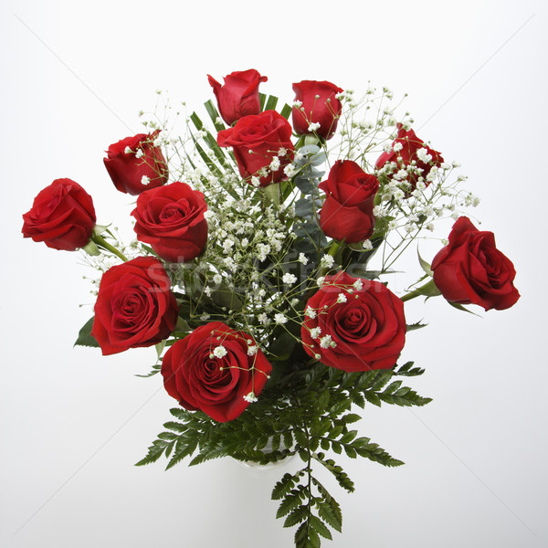 Bouquet roses rouges souffle blanche rouge Romance Photo stock © iofoto