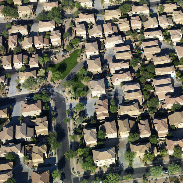 Aerial of suburbs. Stock photo © iofoto