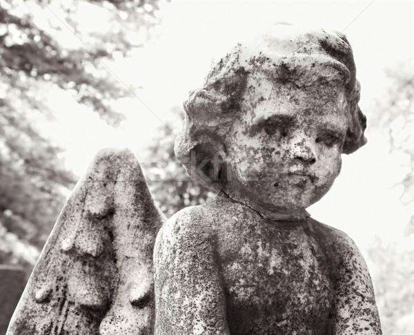 Cherub posąg cmentarz Zdjęcia stock © iofoto
