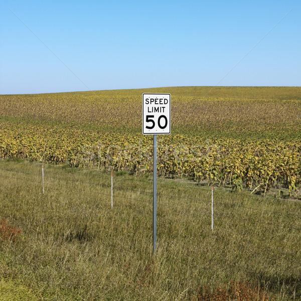 Rural limite de velocidade assinar campo viajar Foto stock © iofoto