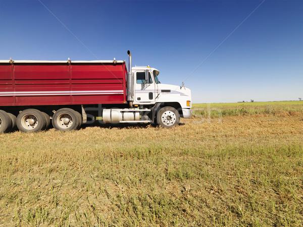 Semi truck in field. Stock photo © iofoto