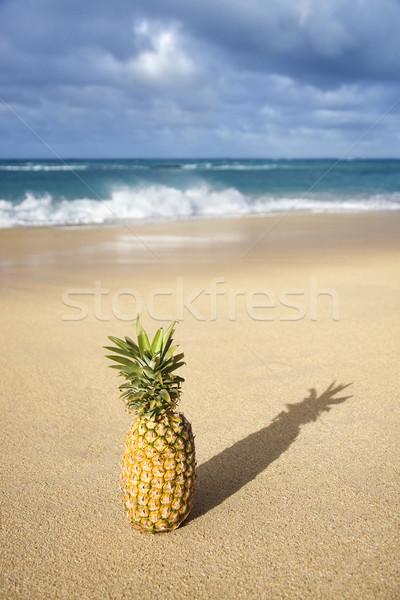 Ananas tropikal plaj bütün gıda meyve okyanus Stok fotoğraf © iofoto