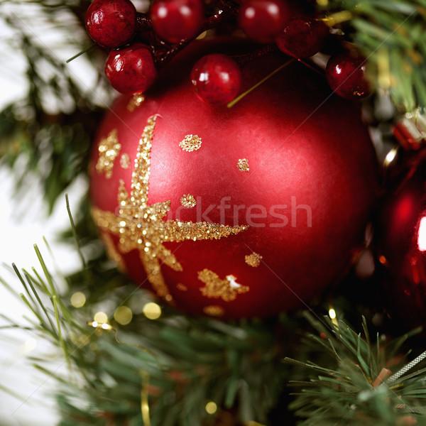 Stockfoto: Christmas · decoraties · Rood · ornament · bessen