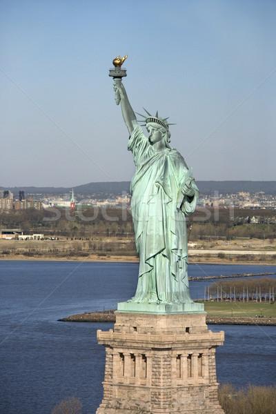 像 自由 ニューヨーク 芸術 鳥 ストックフォト © iofoto