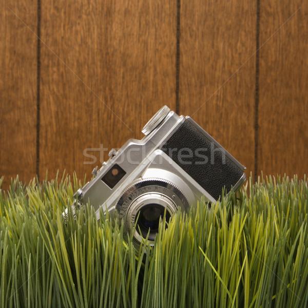 Vintage camera in grass. Stock photo © iofoto