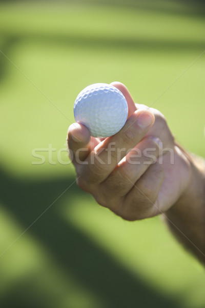 Stock photo: Hand holding golf ball.