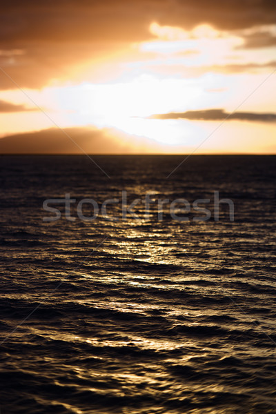 Sunset in Maui. Stock photo © iofoto