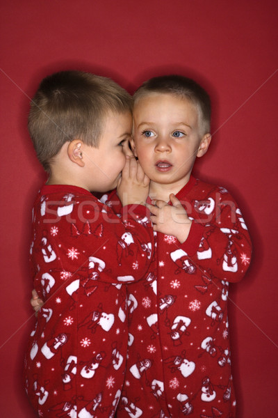 Boy twin brothers whispering. Stock photo © iofoto