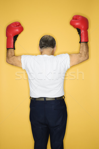Man wearing boxing gloves. Stock photo © iofoto