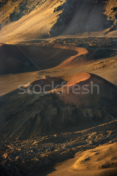Dormant volcano crater, Maui. Stock photo © iofoto
