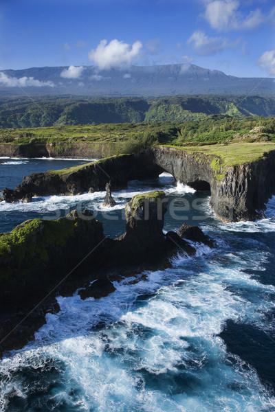 Maui coast. Stock photo © iofoto