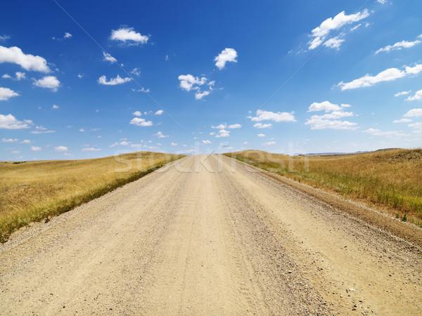 Rural Dirt Road Through Grassland Stock photo © iofoto