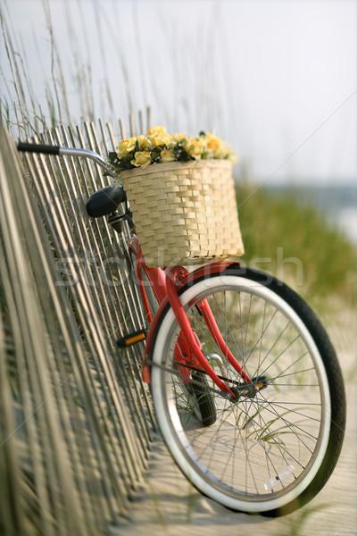 Stock fotó: Bicikli · virágok · piros · klasszikus · bicikli · kosár