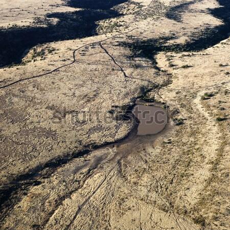 Arizona paisagem deserto pequeno Foto stock © iofoto