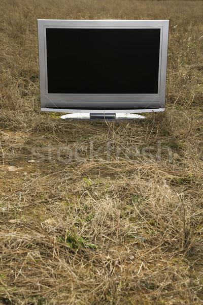 Television in grass. Stock photo © iofoto